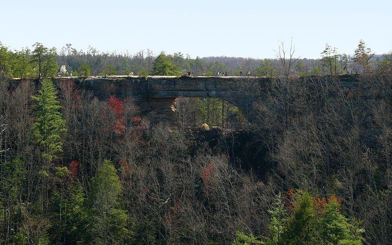 Natural Bridge State Park Road Slade Ky  Usa