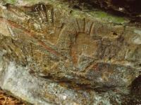 rockyhollow1
