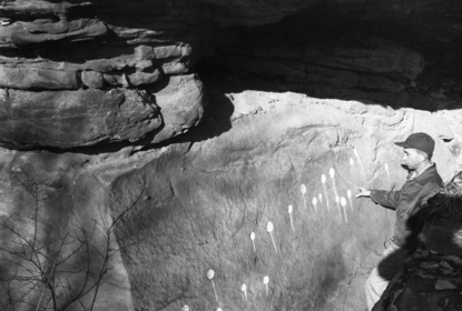 Figure 1. Chalked in Pit and Groove designs at the Trestle Hollow site,   Ca. 1950.